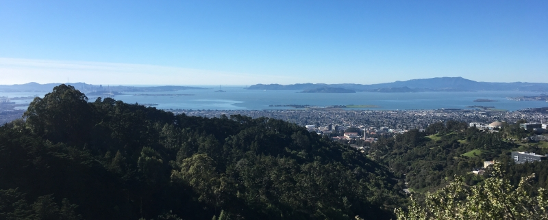 Viewpoint overlooking Berkeley, California